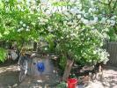 Степная улица Продается  дом в станице Должанская Ейского района